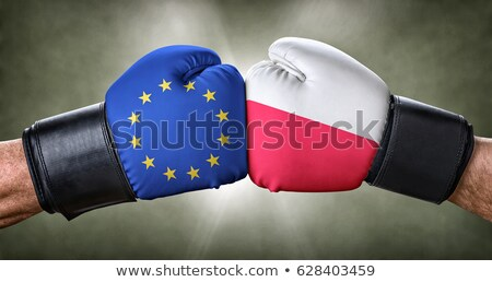 A boxing match between the European Union and Poland Stock photo © Zerbor