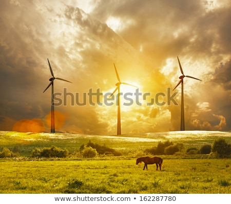 Wind generators in sunrise Stock photo © 5xinc