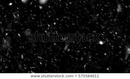 Neve buio molti grande piccolo fiocco di neve Foto d'archivio © romvo