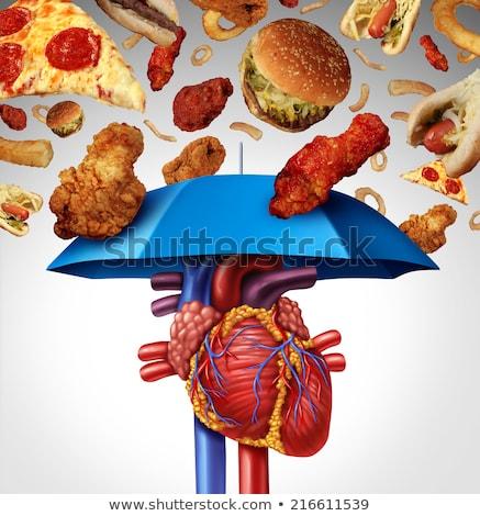 Arteria colesterolo rischio sangue isolato Foto d'archivio © Lightsource