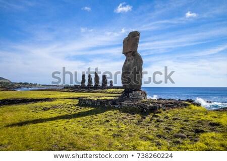 обезьяна · острове · глазах · природы · Palm · рот - Сток-фото © daboost