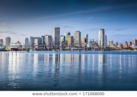 Miami · sziluett · éjszaka · panoráma · panorámakép · kép - stock fotó © creisinger