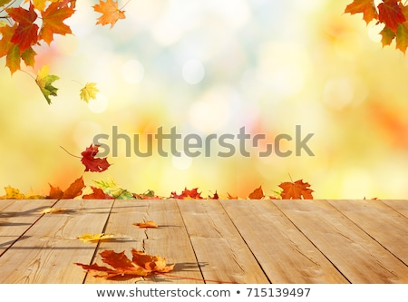 autumn wooden background with maple leaves stock photo © artspace
