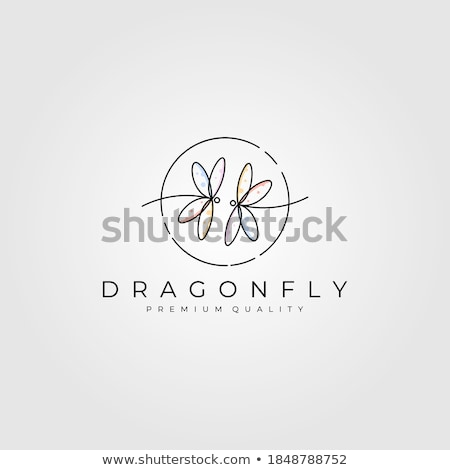 dragonfly circle logo vector icon Stock photo © blaskorizov