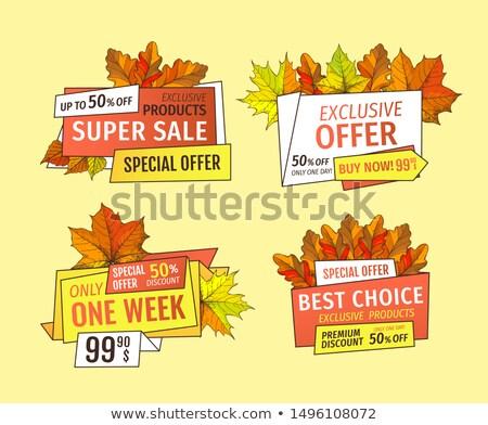 Ekskluzywny oferta dziękczynienie specjalny cena jeden Zdjęcia stock © robuart