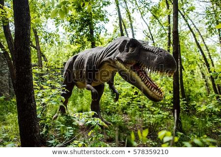 Dinosaures parc illustration maison forêt paysage Photo stock © colematt
