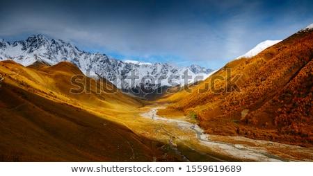 Stock fotó: ősz · hegyek · Grúzia · tájkép · erdő · citromsárga