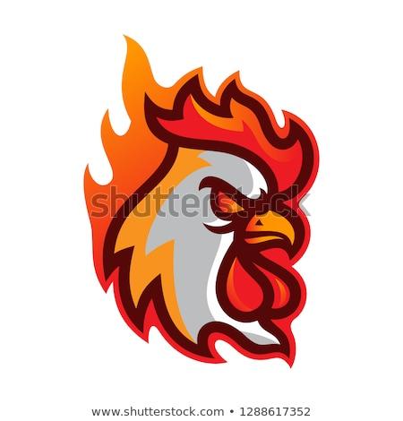 Boos cartoon buffalo wings illustratie naar grafische Stockfoto © cthoman