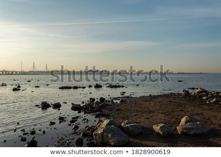 Kora reggel tengerparti tengeri kilátás fény víz fa Stock fotó © lovleah