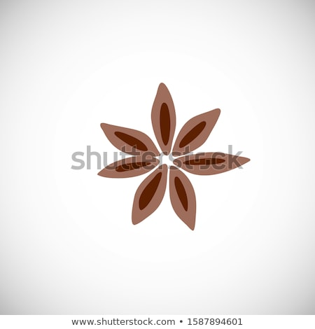 Merry Christmas card with Anise star Vector Stock photo © frimufilms