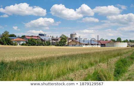 Vidéki díszlet mezőgazdasági déli Németország fű Stock fotó © prill