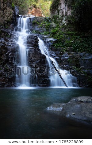 Waterfall  and swimming hole in mountain wilderness Stock photo © lovleah