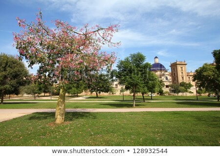 Tuin Valencia Spanje een stedelijke Stockfoto © borisb17