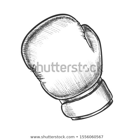 Boxing Gloves Sportive Equipment Monochrome Vector Stock photo © pikepicture