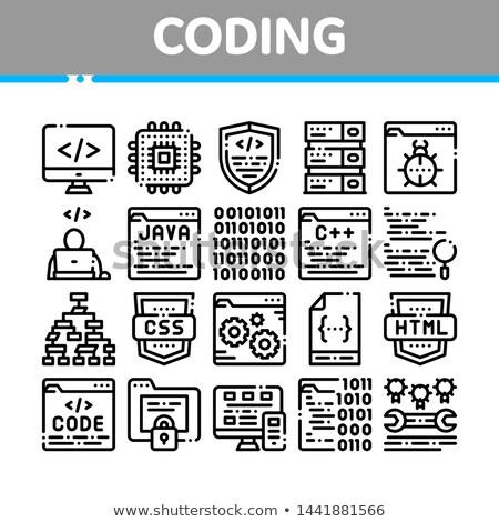 Codering ontwikkeling taal vector dun lijn Stockfoto © pikepicture