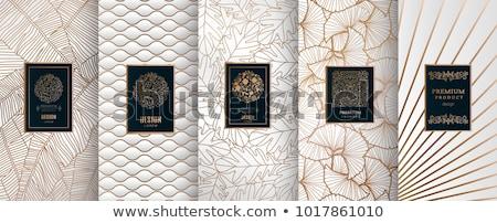 beautiful golden floral invitation frame background design Stock photo © SArts