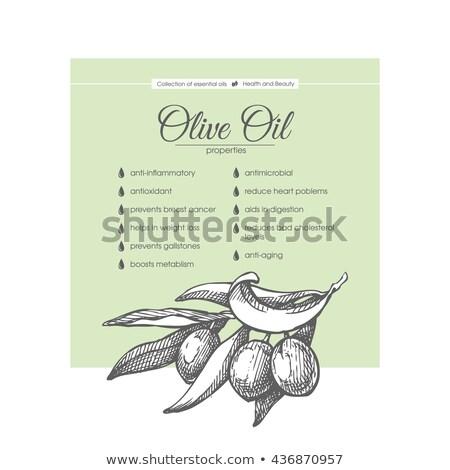 Cilt bakımı kozmetik en az afiş vektör Stok fotoğraf © pikepicture