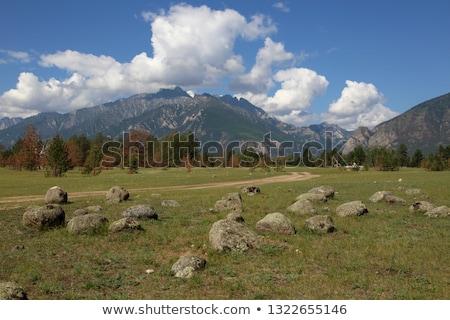 barguzin valley summer landscape russia stock photo © iserg