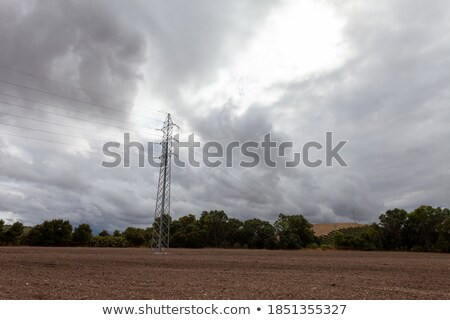 photo of landscape with electric cables and vegetation Stock photo © curaphotography