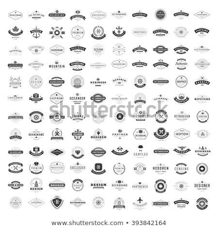 шаблон набор Логотипы бизнеса компьютер Сток-фото © antoshkaforever