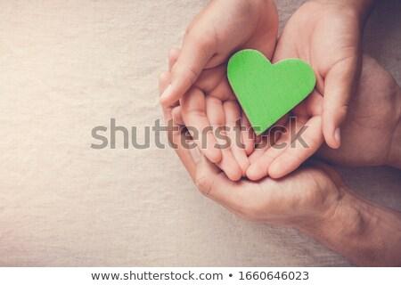 Mãos verde terra humanismo folha Foto stock © Sarunyu_foto