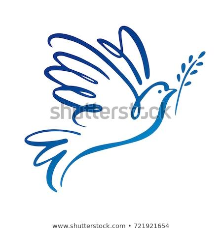 Symbol Of Peace Pigeon Vector Illustration Petra Budkova X Etra