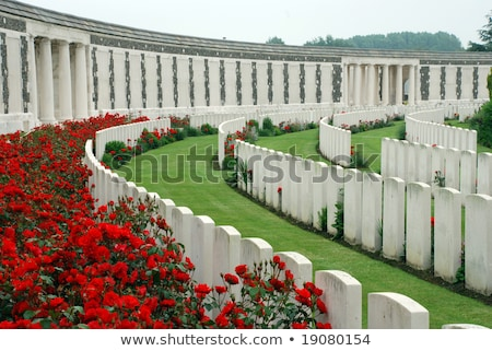British cemetery in Flanders Stock photo © Klodien