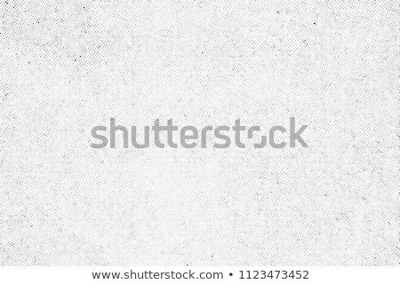 Gürültü genç kadın yün kazak kulaklar kadın Stok fotoğraf © zastavkin