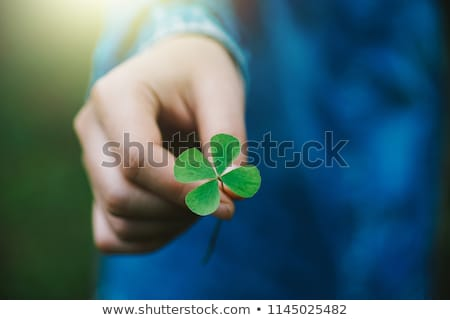Foto stock: Beautiful Woman Holding Clover Leaves