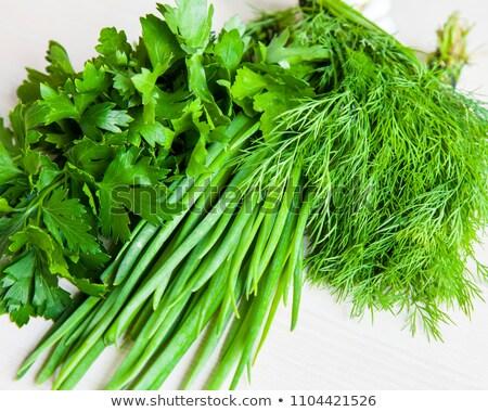 Fennel and parsley Stock photo © Masha