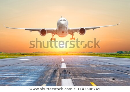 Aterrizaje aeronaves simple cielo avión Jet Foto stock © lkeskinen