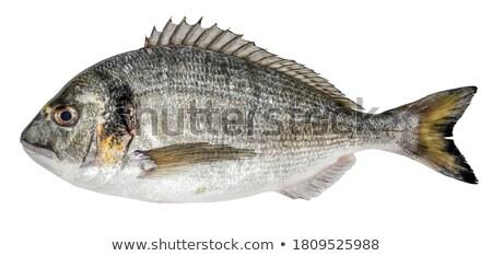 ストックフォト: ライブ · 魚 · 手 · 子 · 金 · 水中