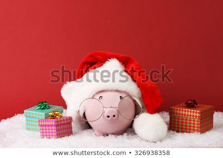 Pink Piggy Bank with Santa Hat on Snowflakes stock photo © feverpitch