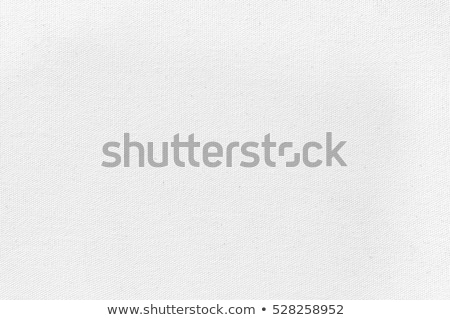 white canvas background Stock photo © MiroNovak
