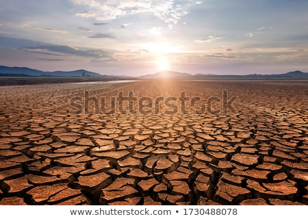 Foto stock: Secar · terra · lama · rachado · fundo · reservatório