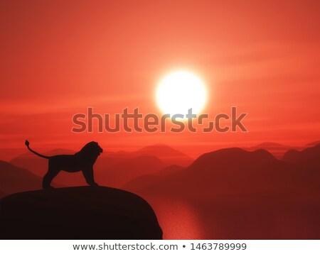 Lion By Sunset - 3d Render Stockfoto © Kjpargeter