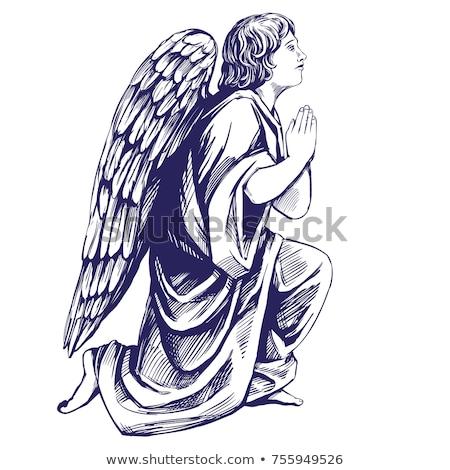 engel · vleugel · halo · ingesteld · afbeelding · pen - stockfoto © cteconsulting
