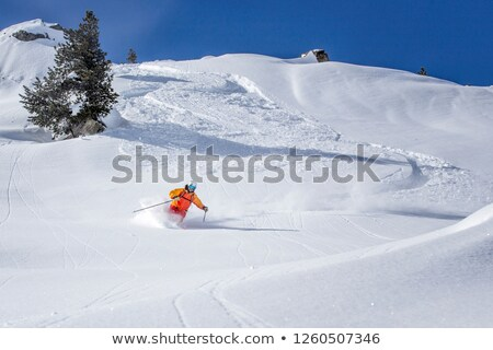 Expert skieur poudre jour matin Vermont Photo stock © DonLand