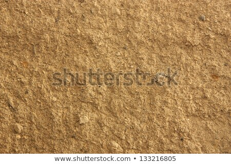 Old Wall Background, based on land and sawdust Stock photo © islam_izhaev