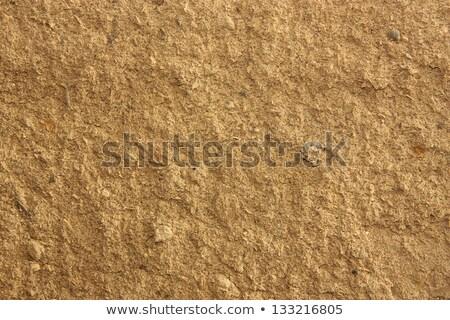 velho · parede · terra · rústico · terra · papel - foto stock © islam_izhaev
