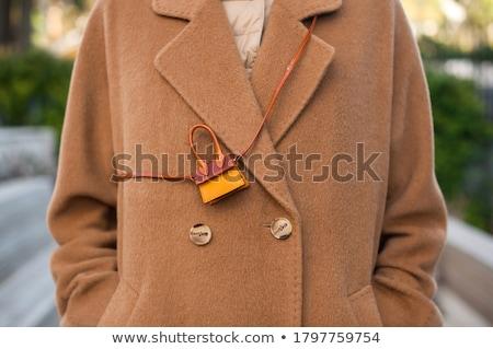 Mode · Frau · Einkaufstaschen · Stadt · eleganten · Stadt - stock foto © anastasiya_popov