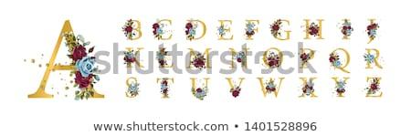 klasszikus · kézzel · rajzolt · autentikus · grunge · bélyeg · retro - stock fotó © mcherevan
