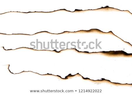 burnt paper Stock photo © Marfot