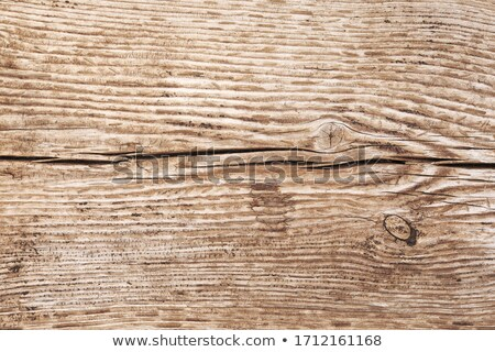 photos over colorful grunge wooden walls stock photo © burakowski
