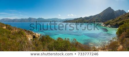 Beach and coastline of Desert des Agriates in Corsica Stock photo © Joningall