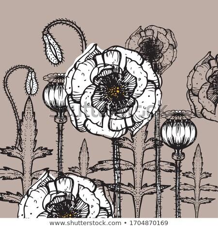 vektör · çiçek · pembe · çiçekler · doku · doğum · günü - stok fotoğraf © coroichi