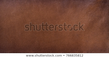 Stock photo: Natural brown leather