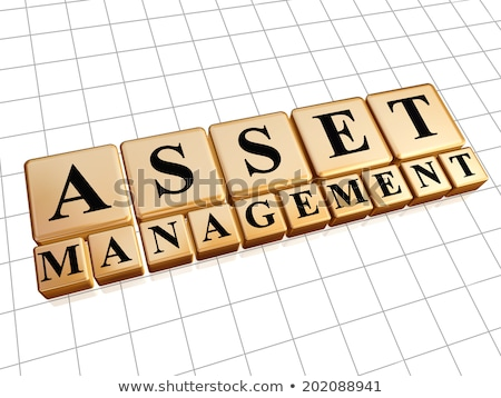 asset management in golden cubes Stock photo © marinini