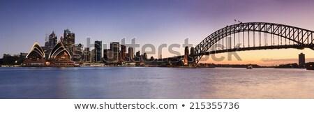 Panoramique vue Sydney central quartier des affaires port Photo stock © ElinaManninen