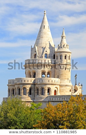 architectural detail of fishermans bastion at night stock photo © amok